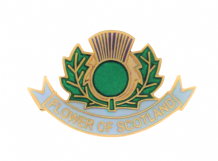 Scotland Flower of Scotland Thistle Pin Badge